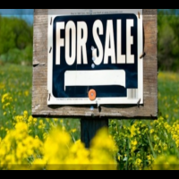 Land For Sale sign in the middle of a vacant land lot